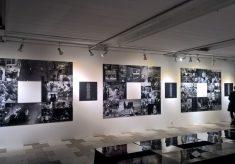 wystawa-1501-miasto-ogrodow-2