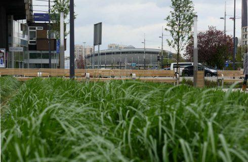 Dzień dobry Katowice. Dziś w nocy wróci zima