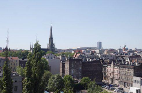 Dzień dobry Katowice. Czy jedzenie owoców z drzew w centrum miasta jest bezpieczne?
