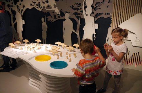 Gdzie jest Tomek? Nowa rodzinna wystawa w Muzeum Śląskim