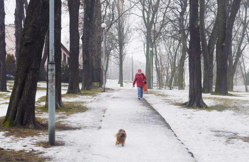 Dzień dobry Katowice. Będzie jeszcze zimniej