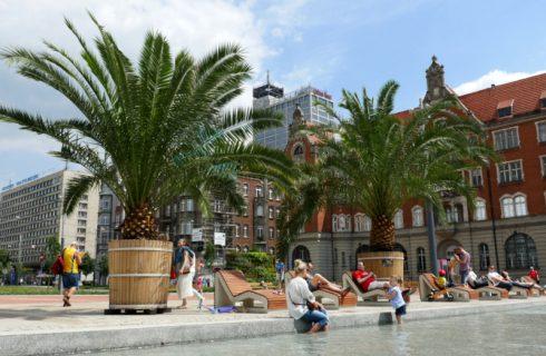 W niedzielę na Rynek w Katowicach wrócą palmy