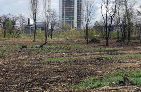 Echo Investment coraz bliżej budowy biurowców w Katowicach